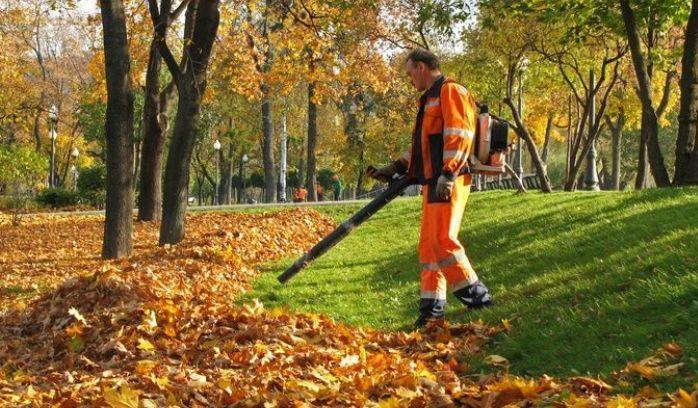 Уборка листьев